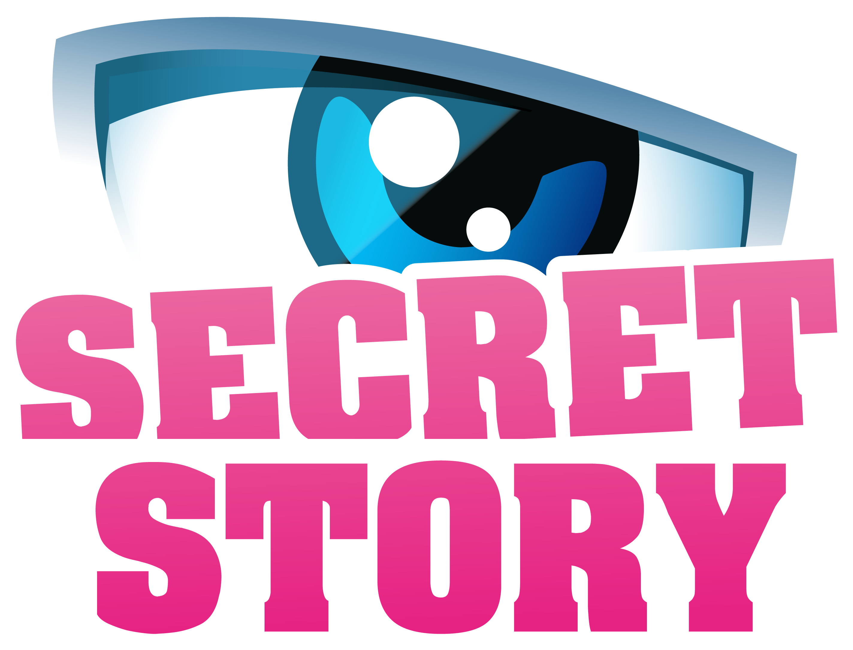 http://cyril.bourreau.free.fr/Vectoriel/Logo-Secretstory-version1.png